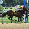 Lady Ivanka - Maiden Win, Saratoga, August 9, 2017<br /> Coglianese Photos