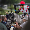 Jockey Manuel Franco gives assistant trainer Norman Casse a high-five after he guided World Approval to the win inthe 33rd running of The Fourstardave at the Saratoga Race  Course Aug. 12, 2017  in Saratoga Springs, N.Y.  (Skip Dickstein