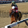 Gun Runner wins the 2017 Whitney<br /> Coglianese Photos/Chelsea Durand
