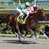 Favorable Outcome wins the 2017 Swale Stakes<br /> Coglianese Photos