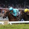 Lady Eli wins the 2017 Diana Stakes<br /> Coglianese Photos/Adam Mooshian