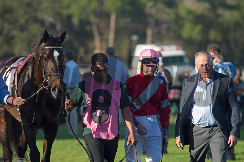 McCraken with Brian j Hernahdez win The Sam F Davis Stakes @ Tampa Bay Down  Feb 11 2017<br /> Ian R Wilkes