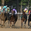 Twisted Tom wins the 2017 Albany Stakes<br /> Coglianese Photos/Arianna Spadoni