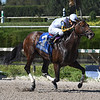 Wildcat's Legacy wins the 2017 Juvenile Sprint Stakes<br /> Coglianese Photos