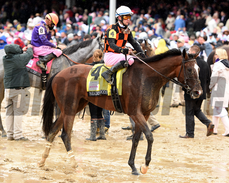 Abel Tasman wins the 2017 Kentucky Oaks<br /> Dave Harmon Photo