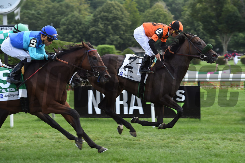 Estrechada wins the 2017 Fasig-Tipton Waya Stakes<br /> Coglianese Photos