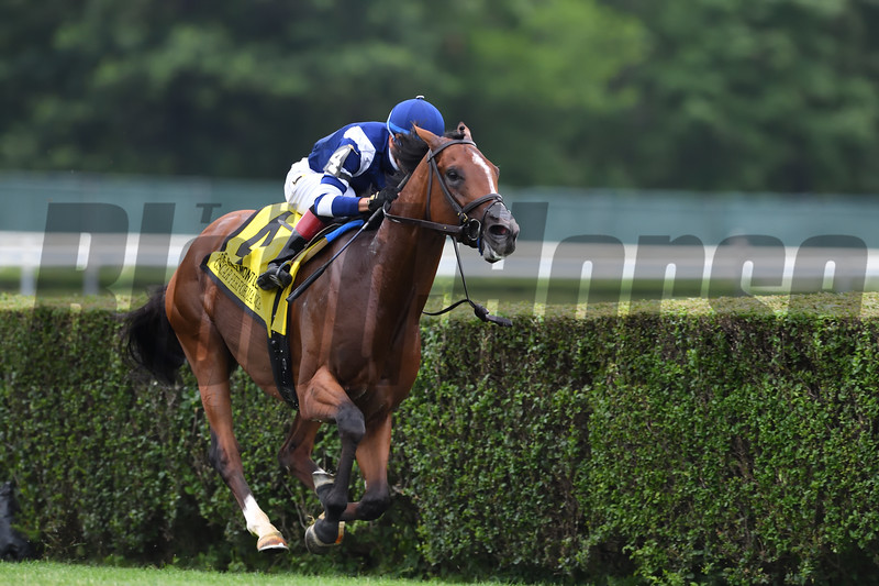 Oscar Performance wins the 2017 Belmont Derby Invitational<br /> Coglianese Photos/Robert Mauhar