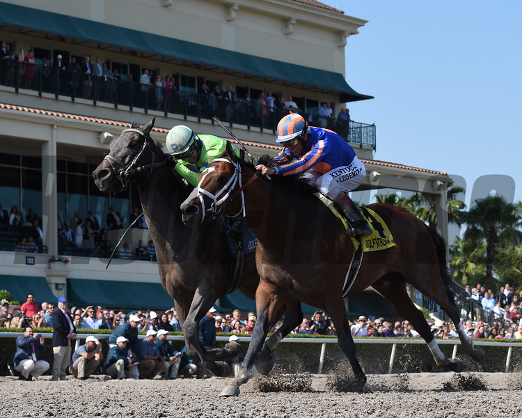 Imperative wins the 2017 Poseidon<br /> Coglianese Photos