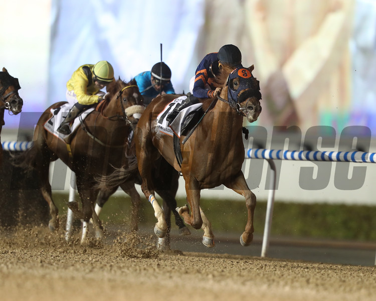 Mind Your Biscuits with jockey Joel Rosario wins the Dubai Golden Shaheen (G1) at Meydan Racecourse on March 25, 2017