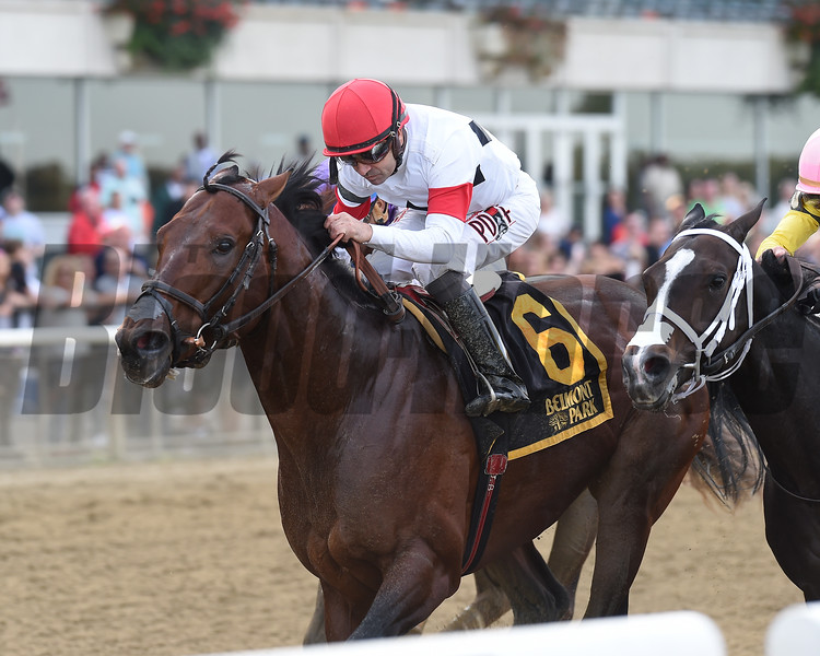 Ostrolenka wins the 2017 Hudson<br /> Coglianese Photos/Chelsea Durand