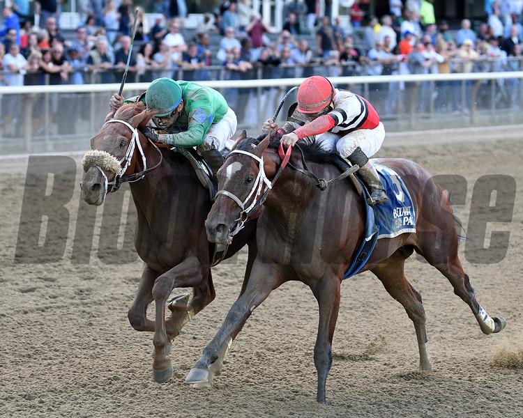 Evaluator wins the 2017 Sleepy Hollow Stakes<br /> Coglianese Photos/Annette Jasko