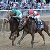 Evaluator wins the 2017 Sleepy Hollow Stakes<br /> Coglianese Photos/Annette Jasko