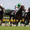 Rey de Oro, Christophe Lemaire, Japanese Derby, G1, Tokyo Yushun, Tokyo Racecourse, May 28 2017
