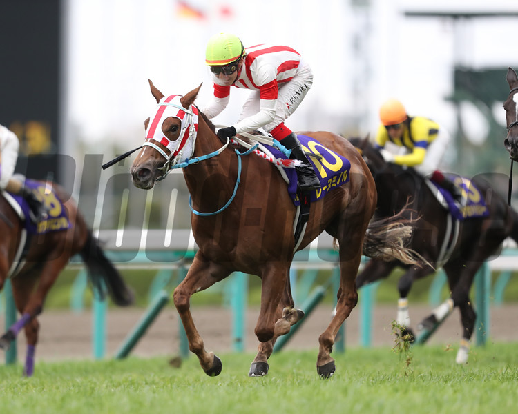 Reine Minoru wins the Oka Sho (G1) at Hanshin Racecourse on April 9 2017