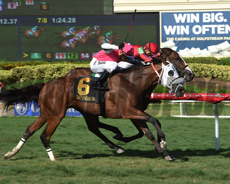 King's Ghost wins the 2017 Treasure Coast<br /> Coglianese Photos/Leslie Martin