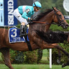 Lady Eli wins the 2017 Diana Stakes<br /> Coglianese Photos/Susie Raisher