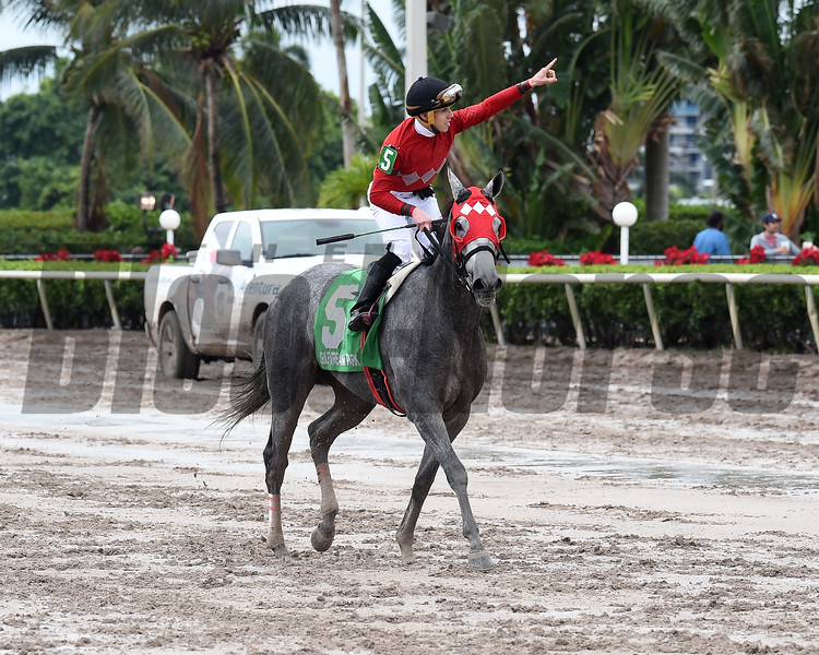 Jaguaryu, $124,000, Lady Caribbean Cup Stakes, Gulfstream Park, December 9 2017