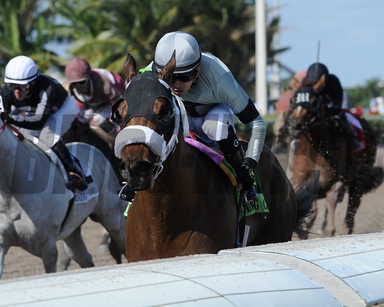 First Growth wins the 2017 Claiming Crown Express<br /> Coglianese Photos/Kenny Martin