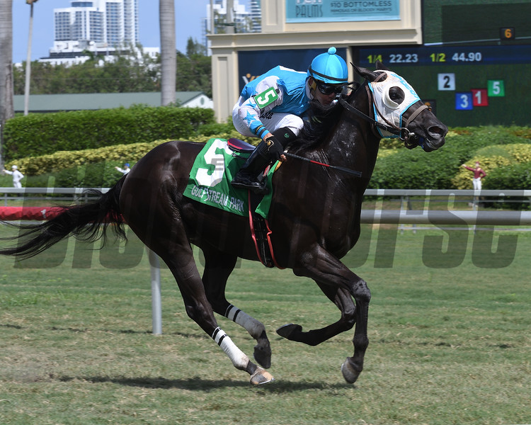 Extravagant Kid wins the 2017 Green Parrot Handicap.<br /> Coglianese Photos/Lauren King