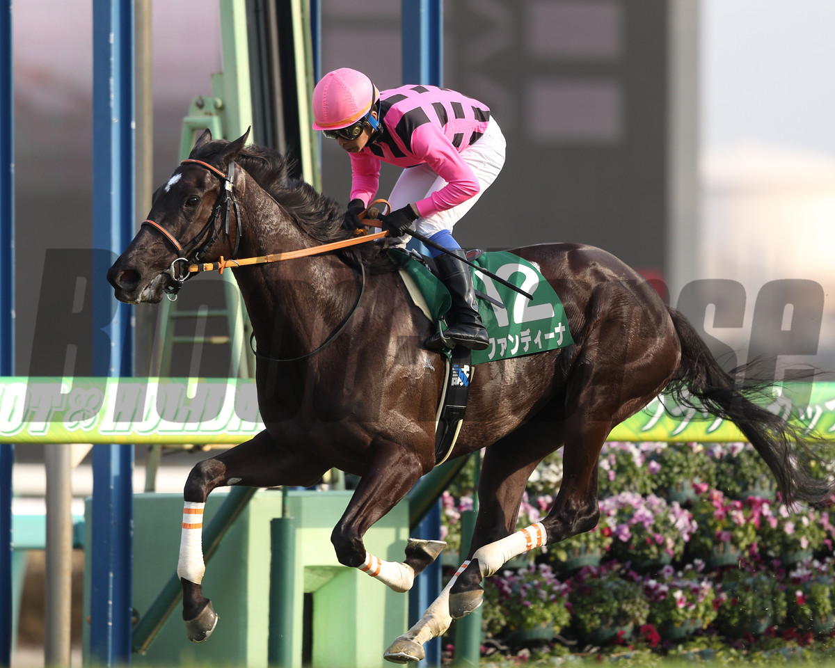 Fan Dii Na wins the Flower Cup (G3) at Nakayama Racecourse in Japan on March 20, 2017
