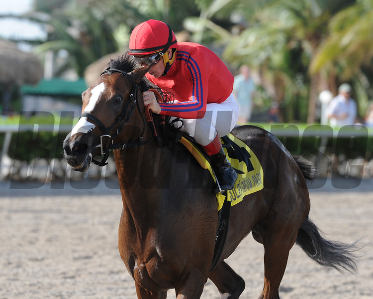 King's Ghost wins the 2017 Monroe Stakes<br /> Coglianese Photos/Kenny Martin