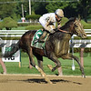 Good Samaritan wins the 2017 Jim Dandy<br /> Coglianese Photos