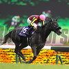 Aerolithe wins the NHK Mile (G1) at Tokyo Racecourse on May 7 2017