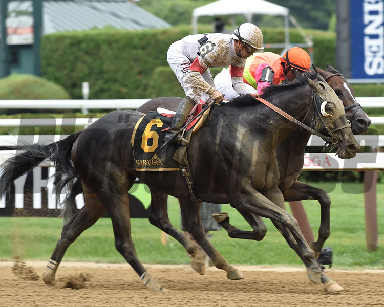 Stallwalkin' Dude wins the 2017 Tale of the Cat Stakes<br /> Coglianese Photos