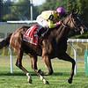 Fourstar Crook wins the 2017 John Hettinger Stakes