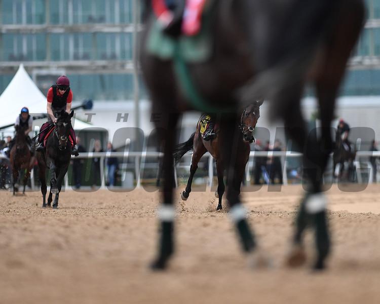 Dubai World Cup -Morning works 3/24/17, photo by Mathea Kelley/Dubai Racing Club<br /> Meydan Scenic