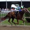 Vertical Oak Jose Ortiz Miss Preakness Stakes Chad B. Harmon