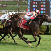 Bricks and Mortar wins the 2017 National Museum of Racing Hall of Fame Stakes<br /> Coglianese Photos