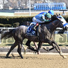 Caledonian with Eric Cancel wins the Lost In The Fog Stakes at Aqueduct on January 1, 2017.