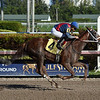 So Sublime - Maiden Win, Gulfstream Park, December 29, 2017<br /> Coglianese Photos/Leslie Martin