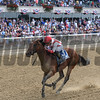 Practical Joke wins the 2017 Dwyer.<br /> Coglianese Photos/Annette Jasko