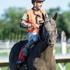 Girvin wins the 2017 Haskell Invitational (G1)
