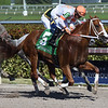 Early Entry wins the 2017 Sunshine Millions Sprint Stakes<br /> Coglianese Photos