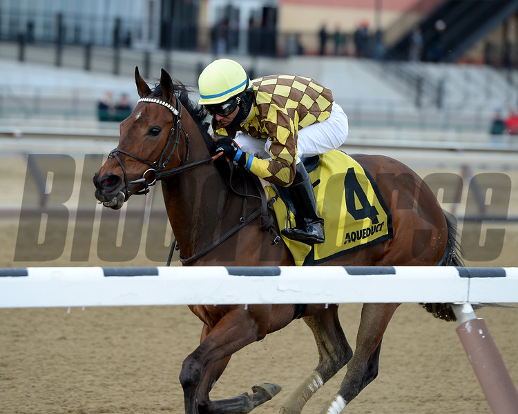 Isabelle wins the 2017 Heavenly Prize Stakes<br /> Coglianese Photos/Joe Labozzetta