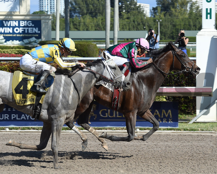 Tequilita wins the 2017 Forward Gal<br /> Coglianese Photos/Leslie Martin