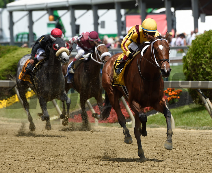 Terra Promessa with jockey Jose L. Ortiz in the irons runs away from the field in the 24th running of The Allaire Dupont Distaff Stsakes at Pimlico Race Course May 19, 2017 in Baltimore, MD. Photo by Skip Dickstein
