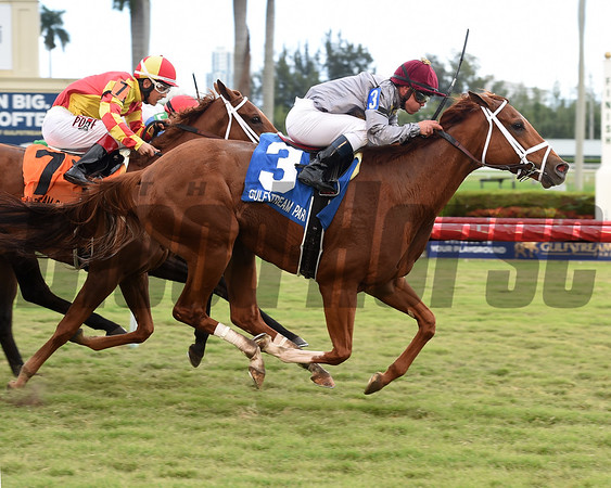 Sandiva wins the 2017 Marshua's River Stakes<br /> Coglianese Photos/Leslie Martin