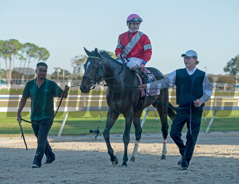 McCraken with Brian j Hernahdez win The Sam F Davis Stakes @ Tampa Bay Down  Feb 11 2017<br /> Stuart Whitham walking with horse