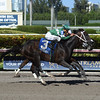 Three Rules wins the 2017 Carry Back<br /> Coglianese Photos/Leslie Martin