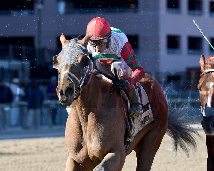 Send It In wins the 2017 Excelsior Stakes<br /> Coglianese Photos/Adam Mooshian