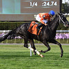 Black Tide wins the 2017 Mohawk<br /> Coglianese Photos/Viola Jasko