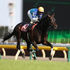 Admirable wins the Aoba Sho (G2) at Kyoto on April 29 2017