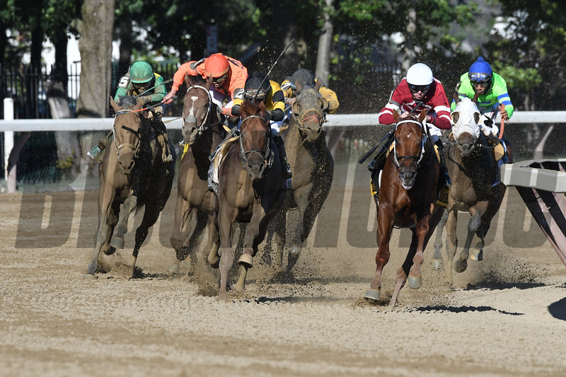 Gun Runner wins the 2017 Whitney<br /> Coglianese Photos/Arianna Spadoni