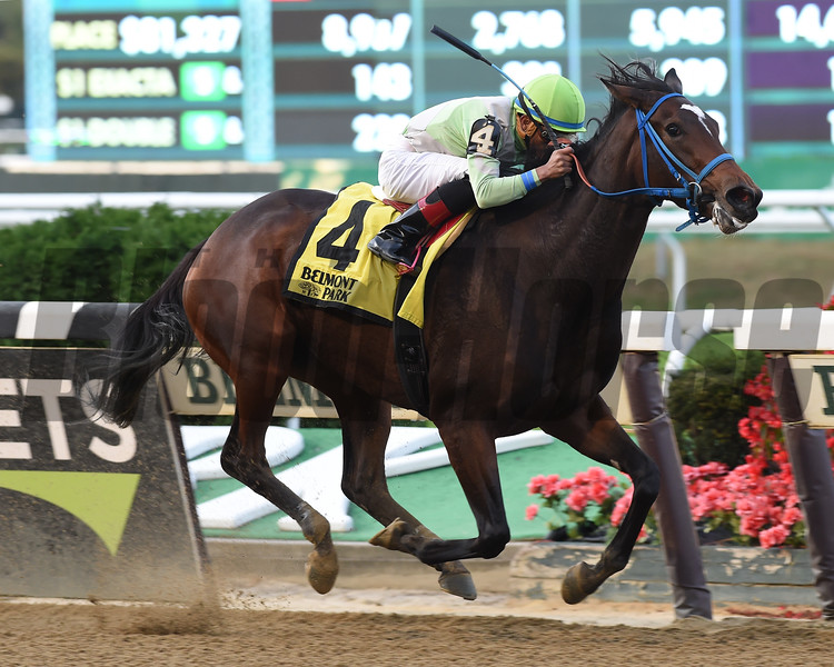 Verdant Pastures wins the 2017 Empire Distaff Handicap<br /> Coglianese Photos