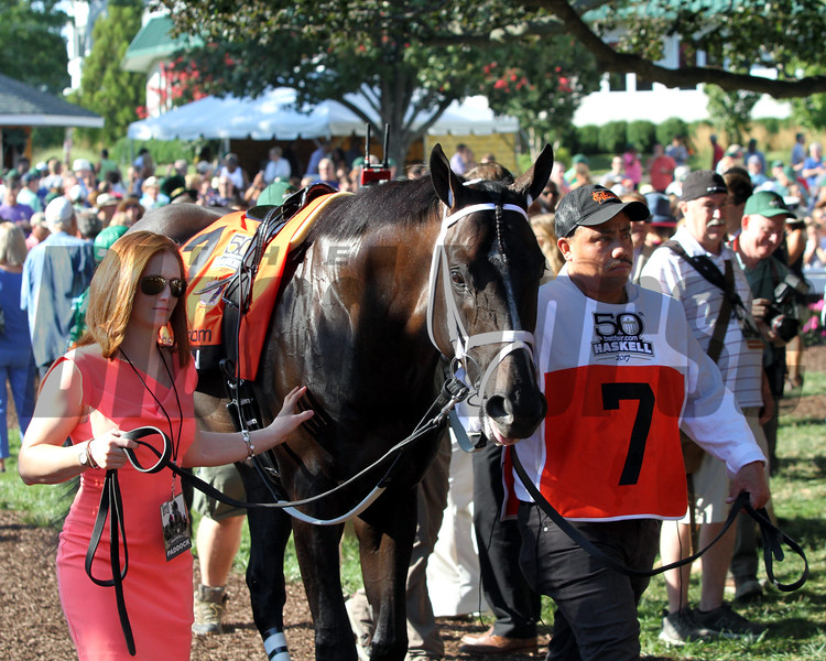 Girvin in the paddock prior to winning the 50th Running of the Haskell Invitational (GI) at Monmouth Park on July 30, 2017. Photo By: Chad B. Harmon