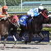 Mia Torri wins the 2017 Sunshine Millions Distaff<br /> Coglianese Photos